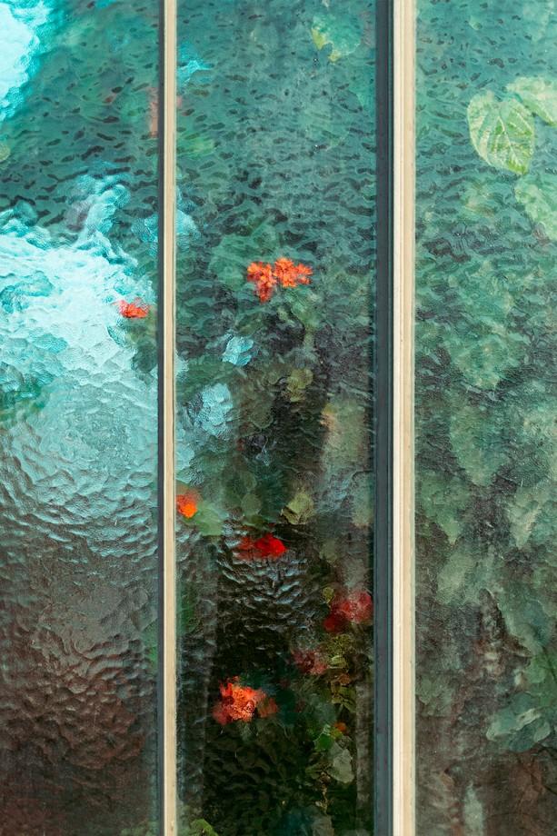 jardin-botanique-photo-03
