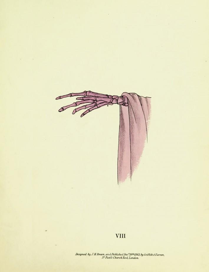 spectropia-fantome-illusion-persistence-retiniene-10