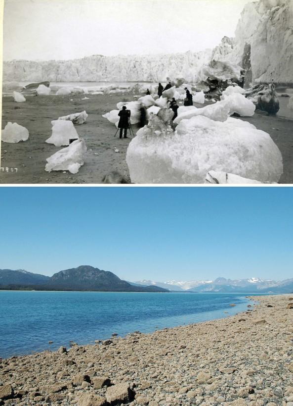 01-muir8ab-recul-glacier-alaska-bo