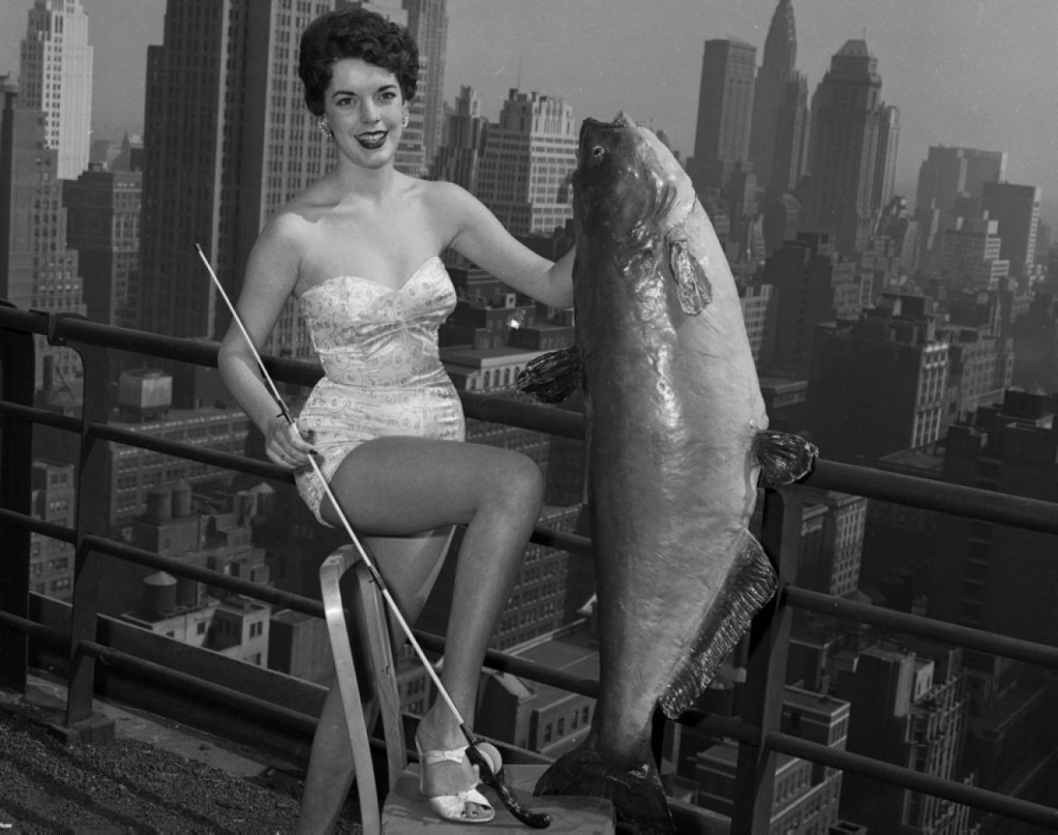 Miss Poisson-chat 1954