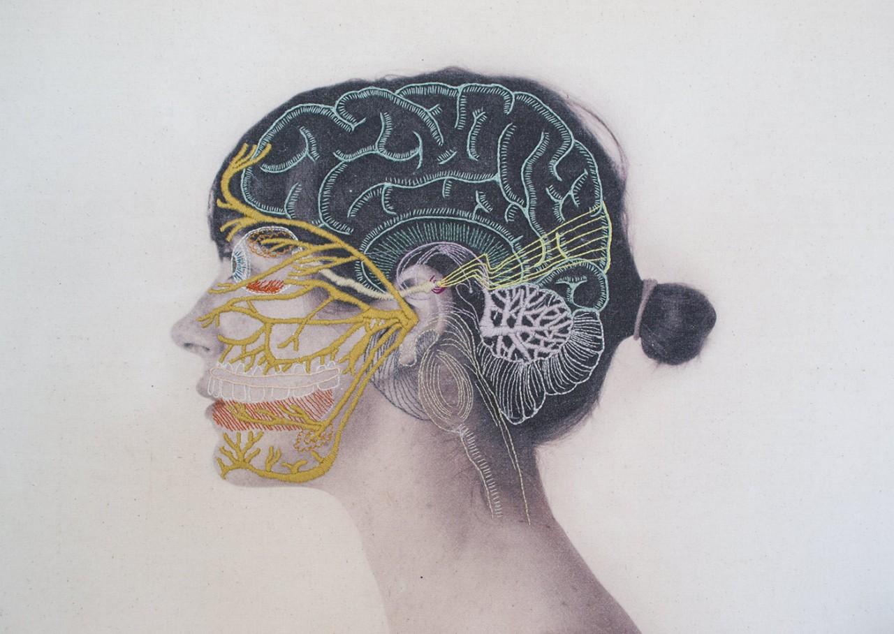 broderie-anatomique-01