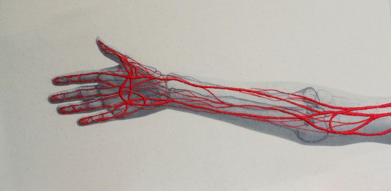 broderie-anatomique-02