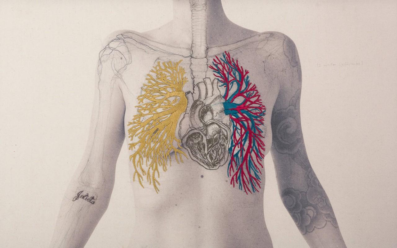 broderie-anatomique-03