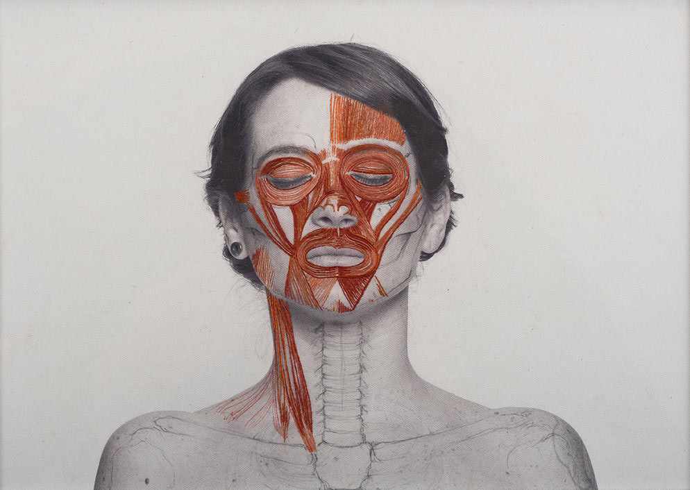 broderie-anatomique-05