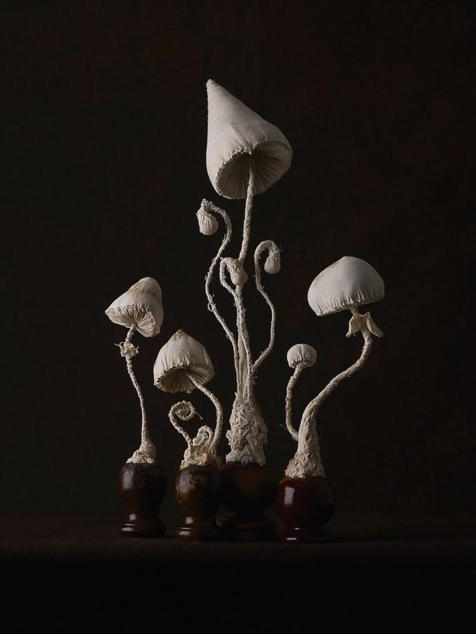 champignons-textiles-03