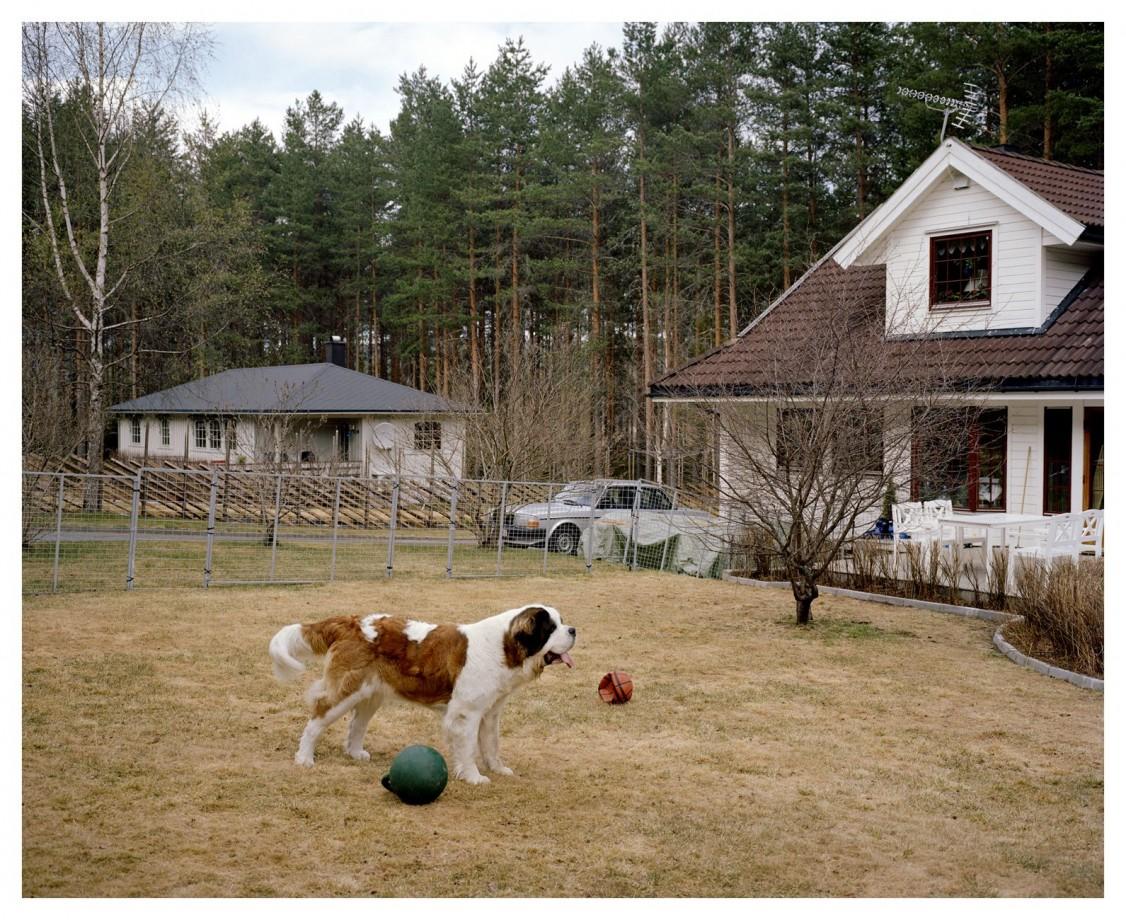 volvo-240-suede-paysage-Helge-Skodvin-03