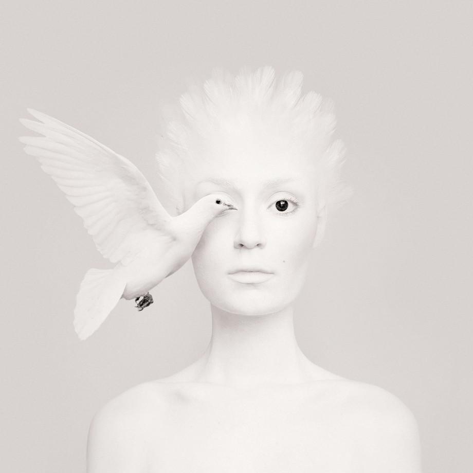 animal-oeil-portrait-02