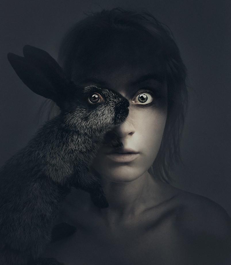animal-oeil-portrait-03