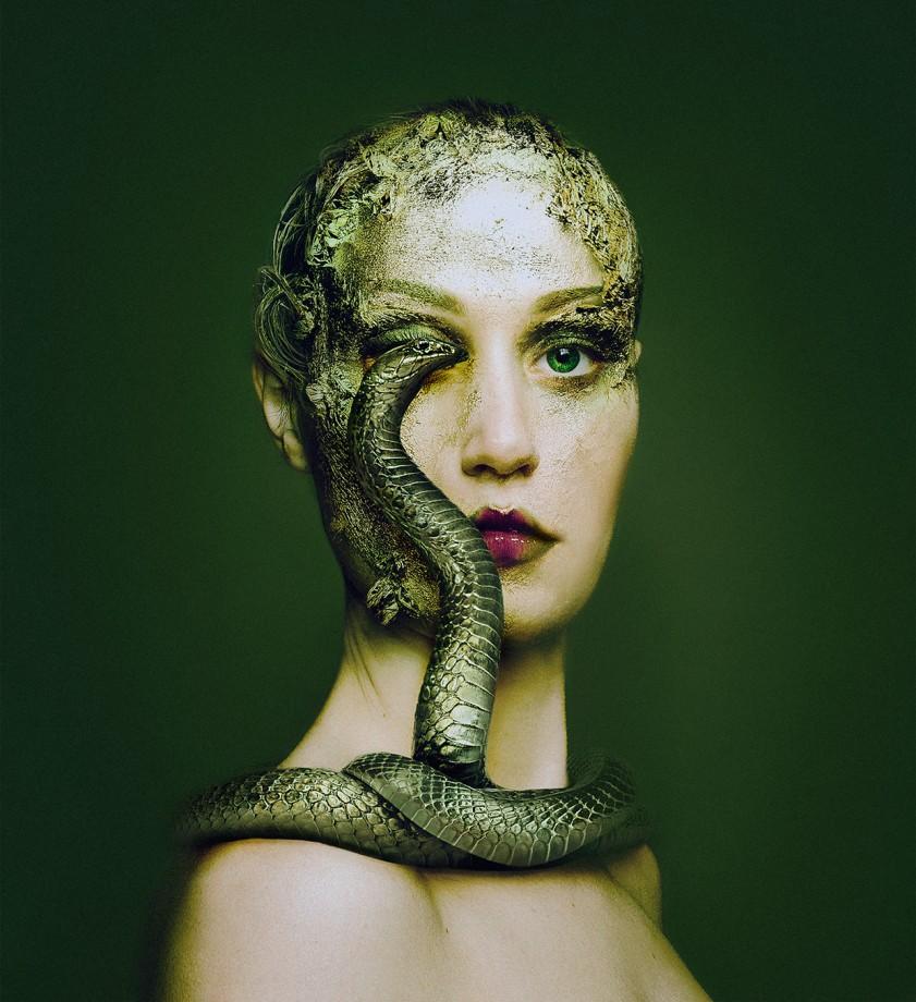 animal-oeil-portrait-04