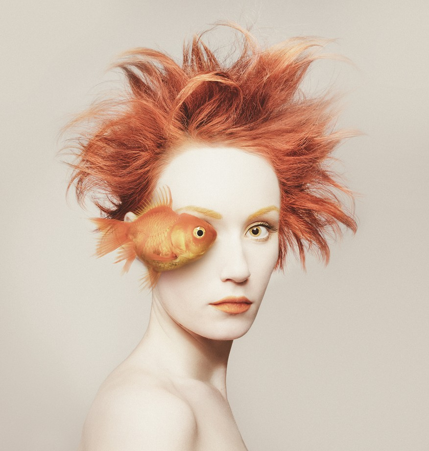animal-oeil-portrait-05