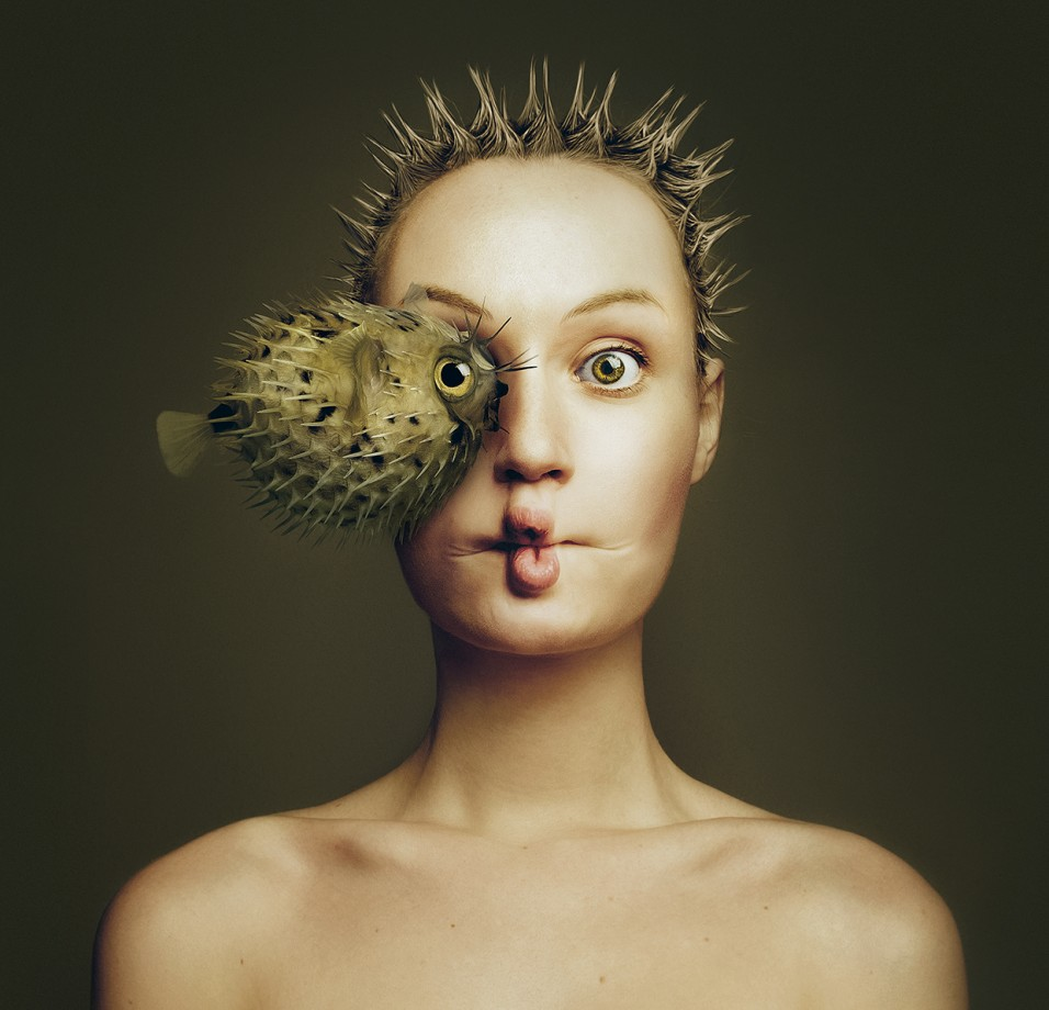 animal-oeil-portrait-06