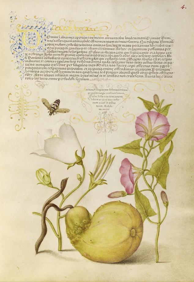 Mira-calligraphiae-monumenta-04