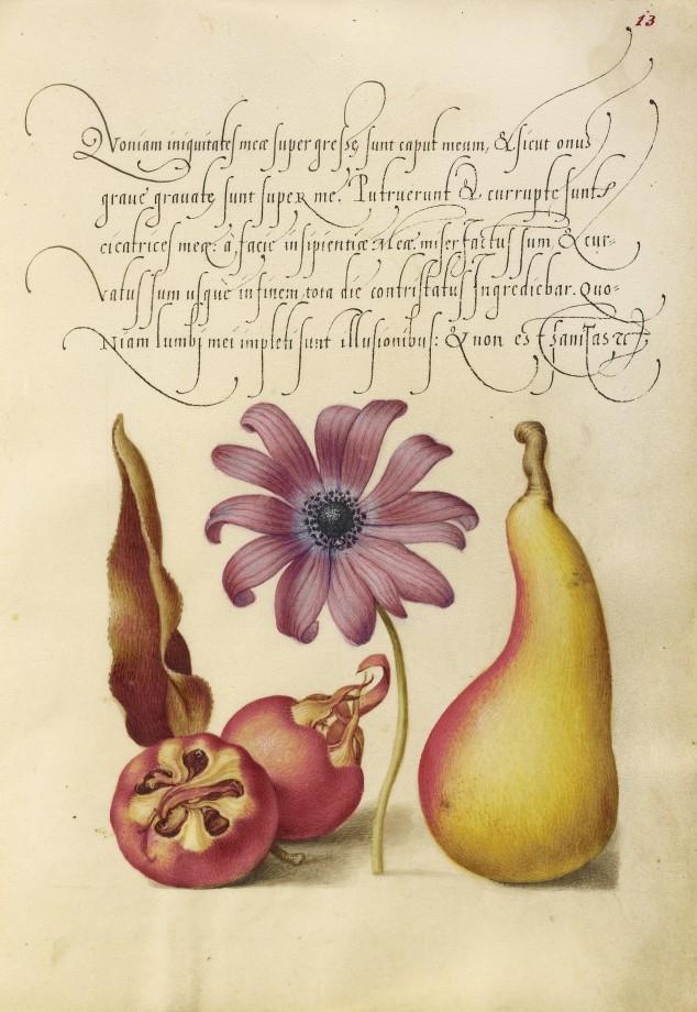 Mira-calligraphiae-monumenta-10