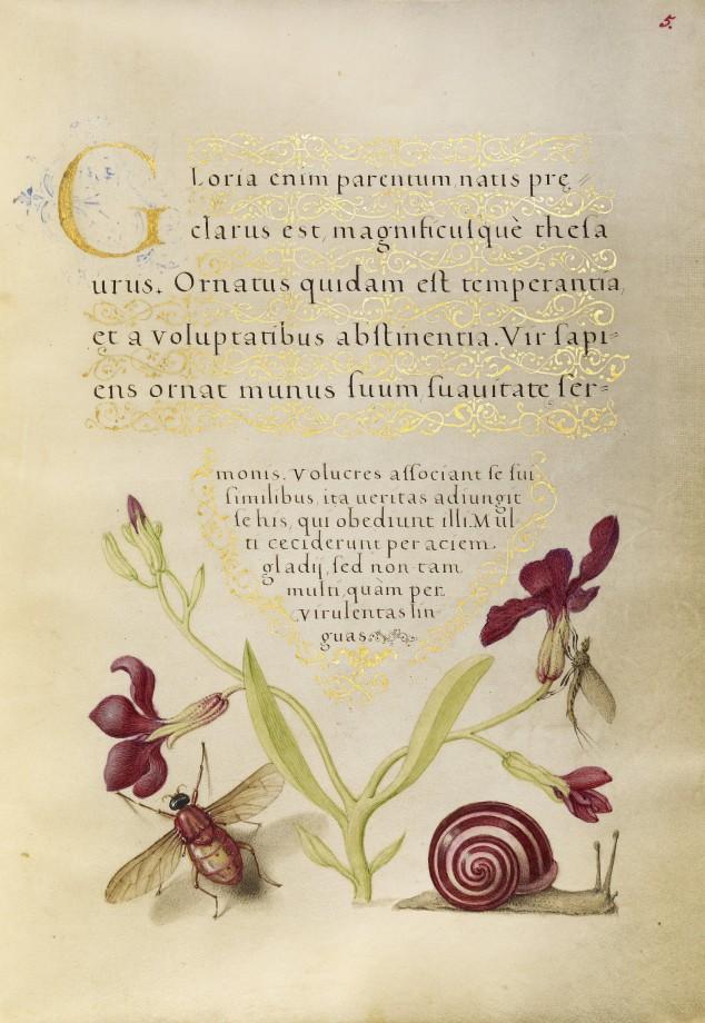 Mira-calligraphiae-monumenta-11