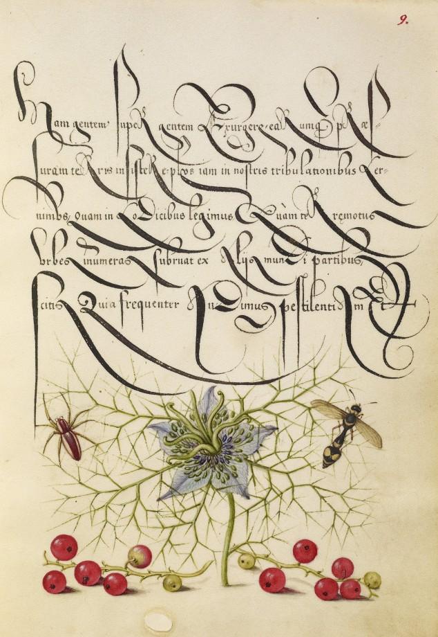 Mira-calligraphiae-monumenta-13