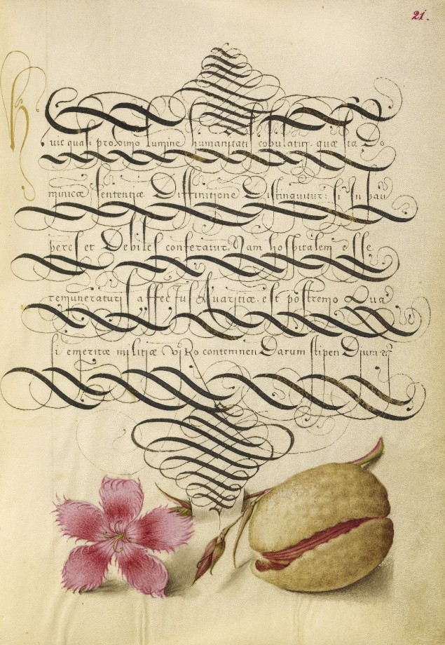 Mira-calligraphiae-monumenta-20