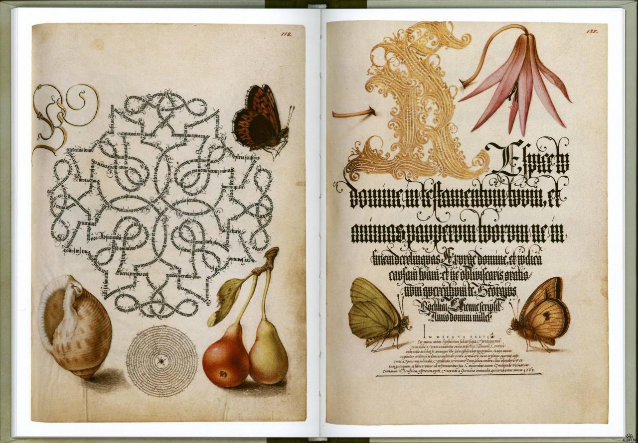 Mira-calligraphiae-monumenta-24