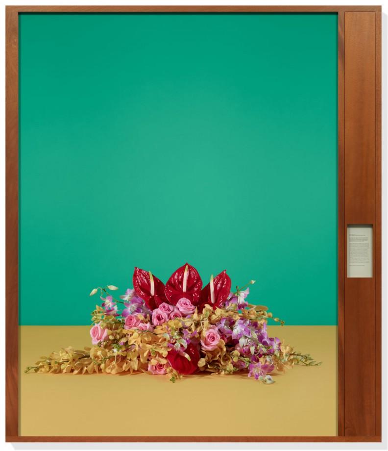 fleur-diplomatie-simmons-004