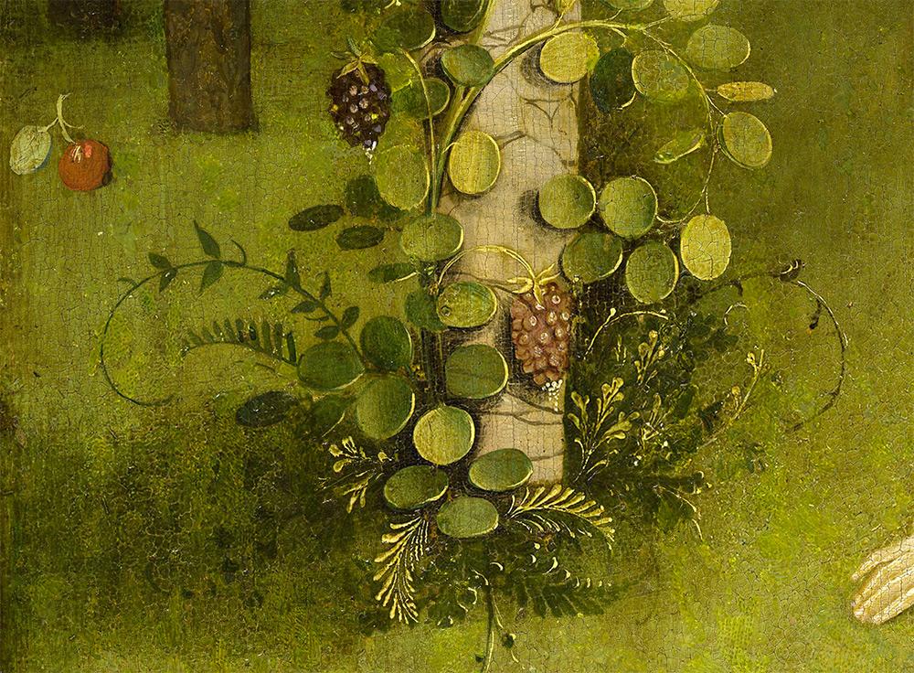 jardin-delice-bosch-04