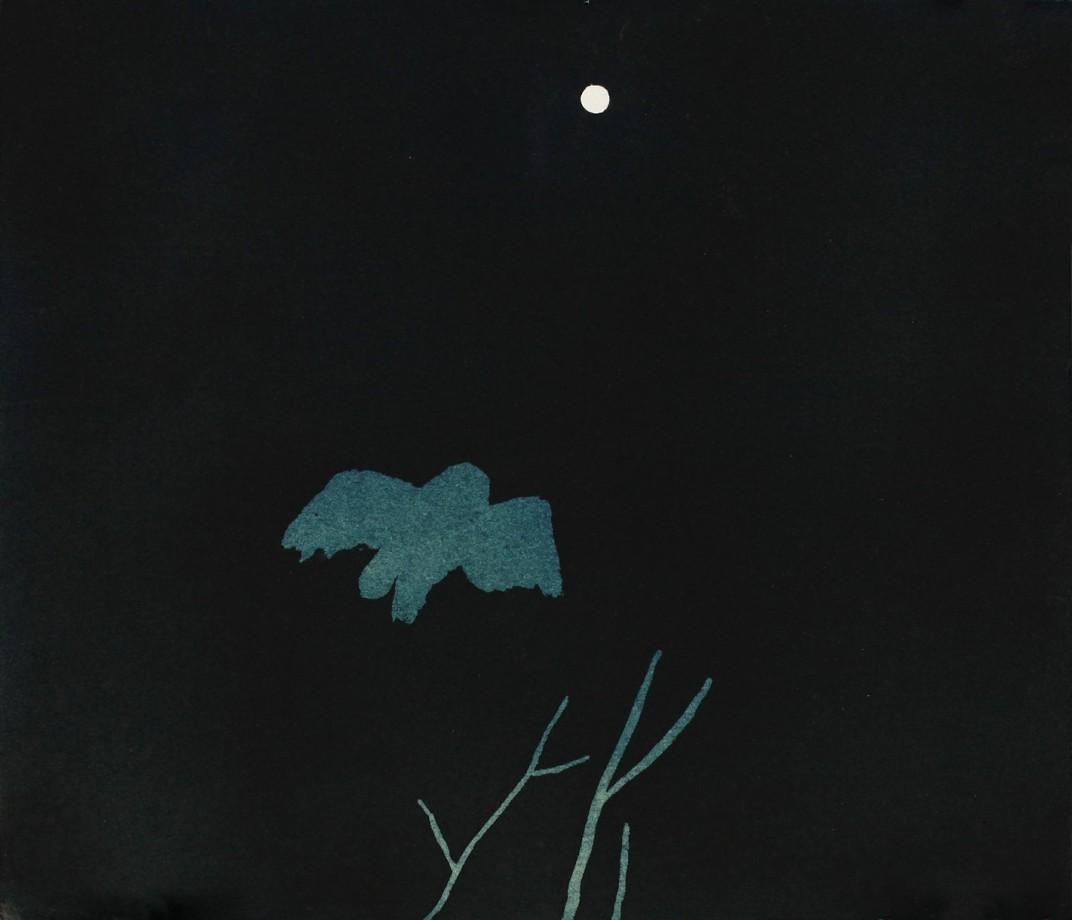 peinture-cynaotype-09