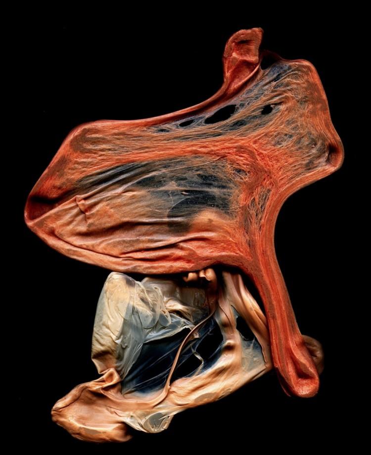 sculpture-chewingum-bouche-03