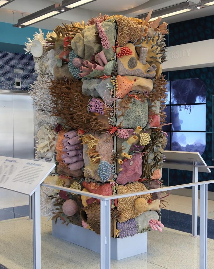 sculpture-recif-corail-ceramique-07