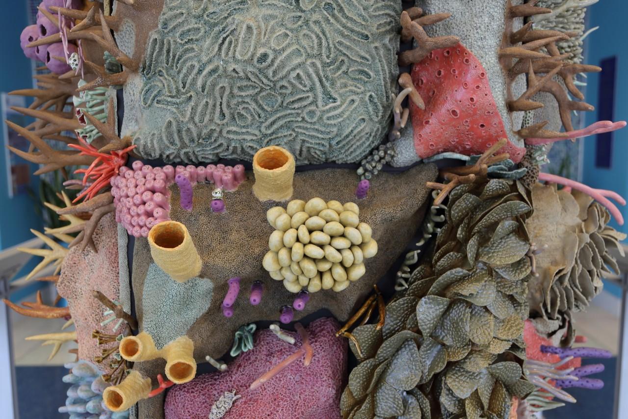 sculpture-recif-corail-ceramique-08