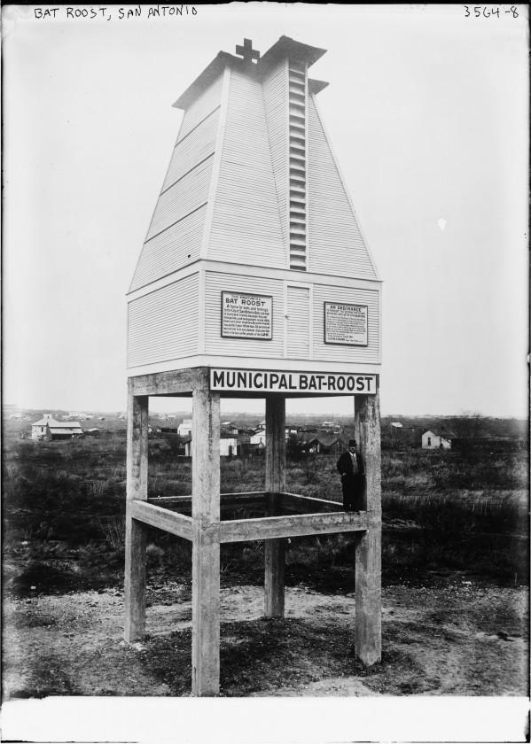 La Batcave municipale de San Antonio en 1914
