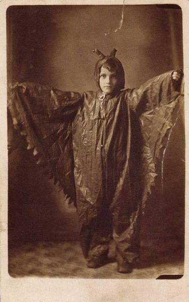 costume-batman-vieu-ancien-chauvesouris-11