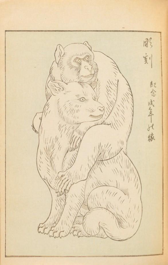 magazine-japon-design-graphisme-28