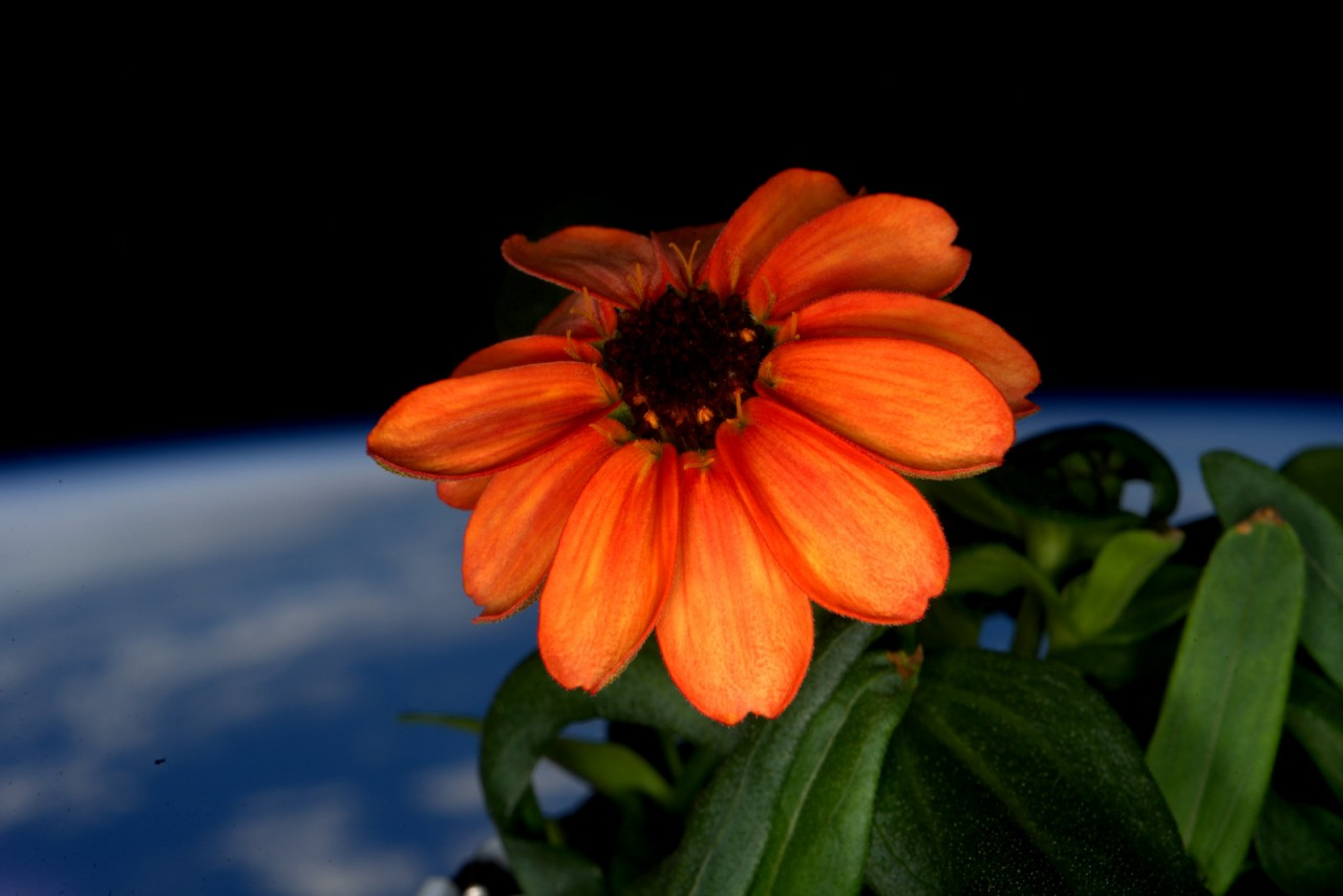 photo-un-an-espace-35