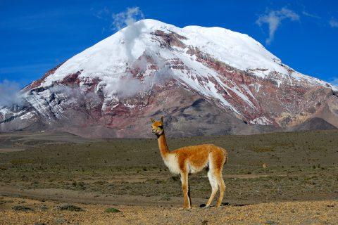 Chimborazo-montagne-record-hauteur-01