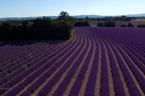 C'est beau la Provence d'en haut