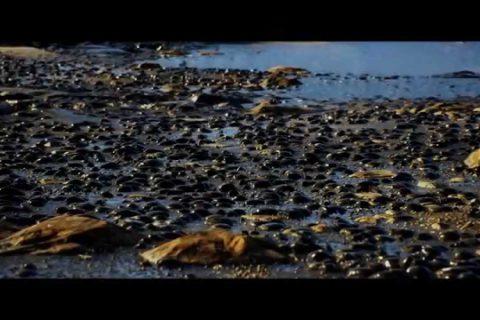 Des paysages très réels avec l'Unreal Engine 4