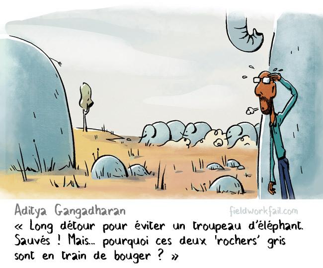 mesaventures-scientifique-terrain-08