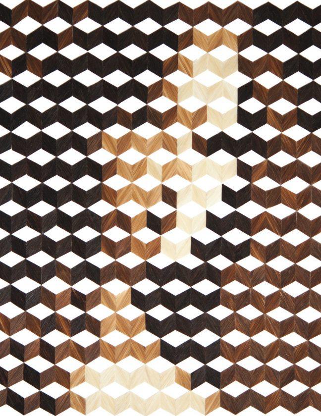 oeuvre-cheveu-geometrie-01