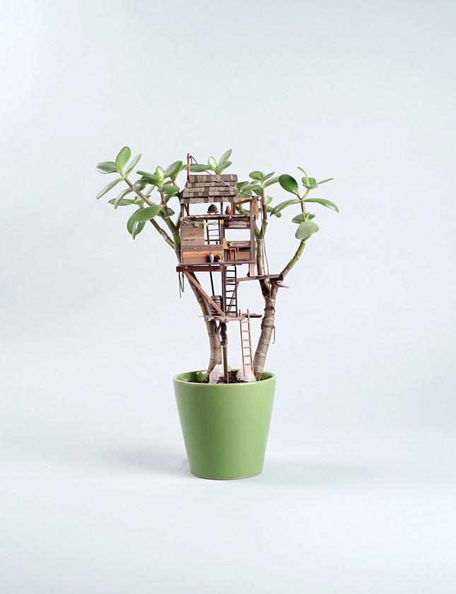 plante-cabane-interieur-06