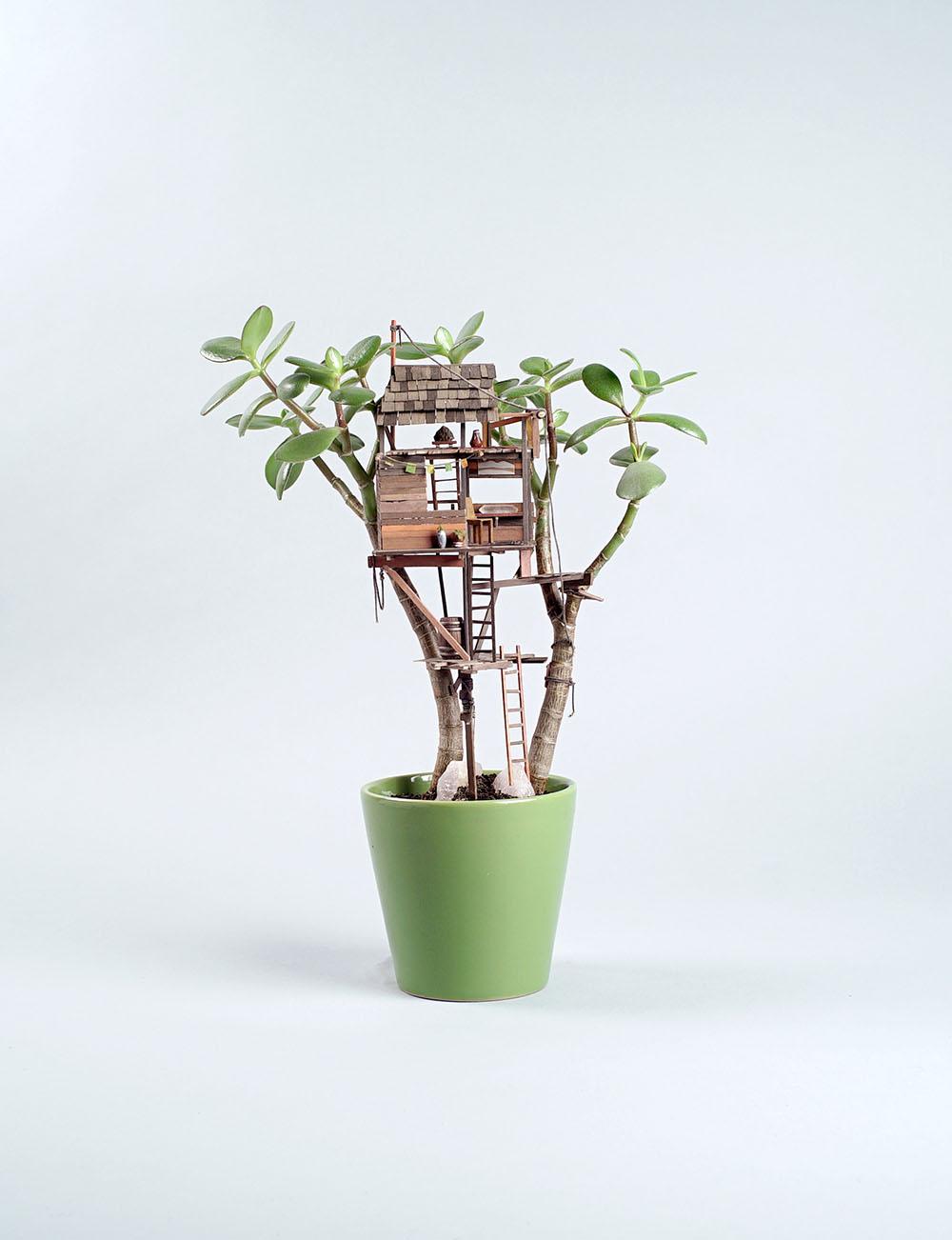 Des petites cabanes dans des plantes d 39 int rieur - Petites plantes d interieur ...