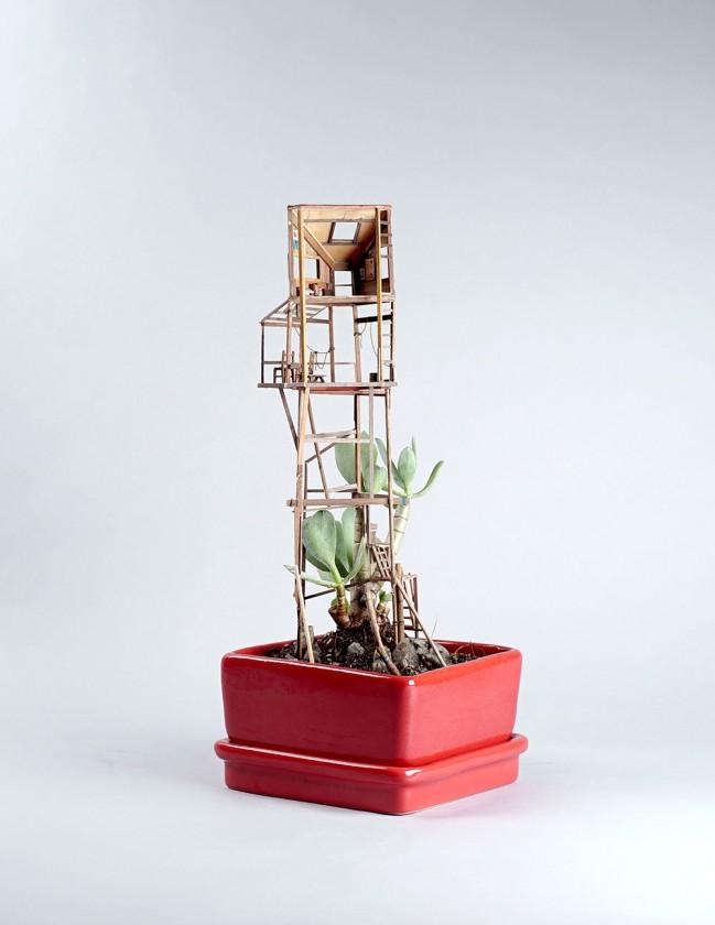 plante-cabane-interieur-10