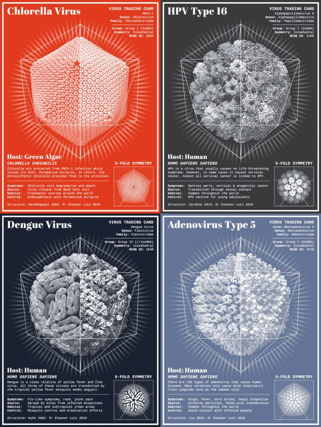 virus-animation-infographie-01