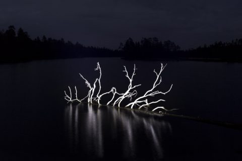 Mikael-Lafontan-Marais-01