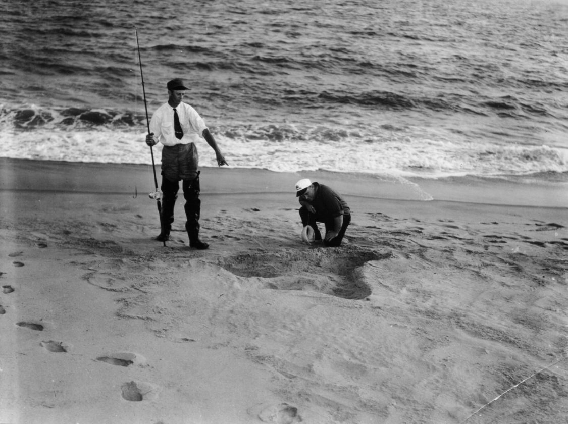 Sea-Serpent-Nantucket-Monstre-30