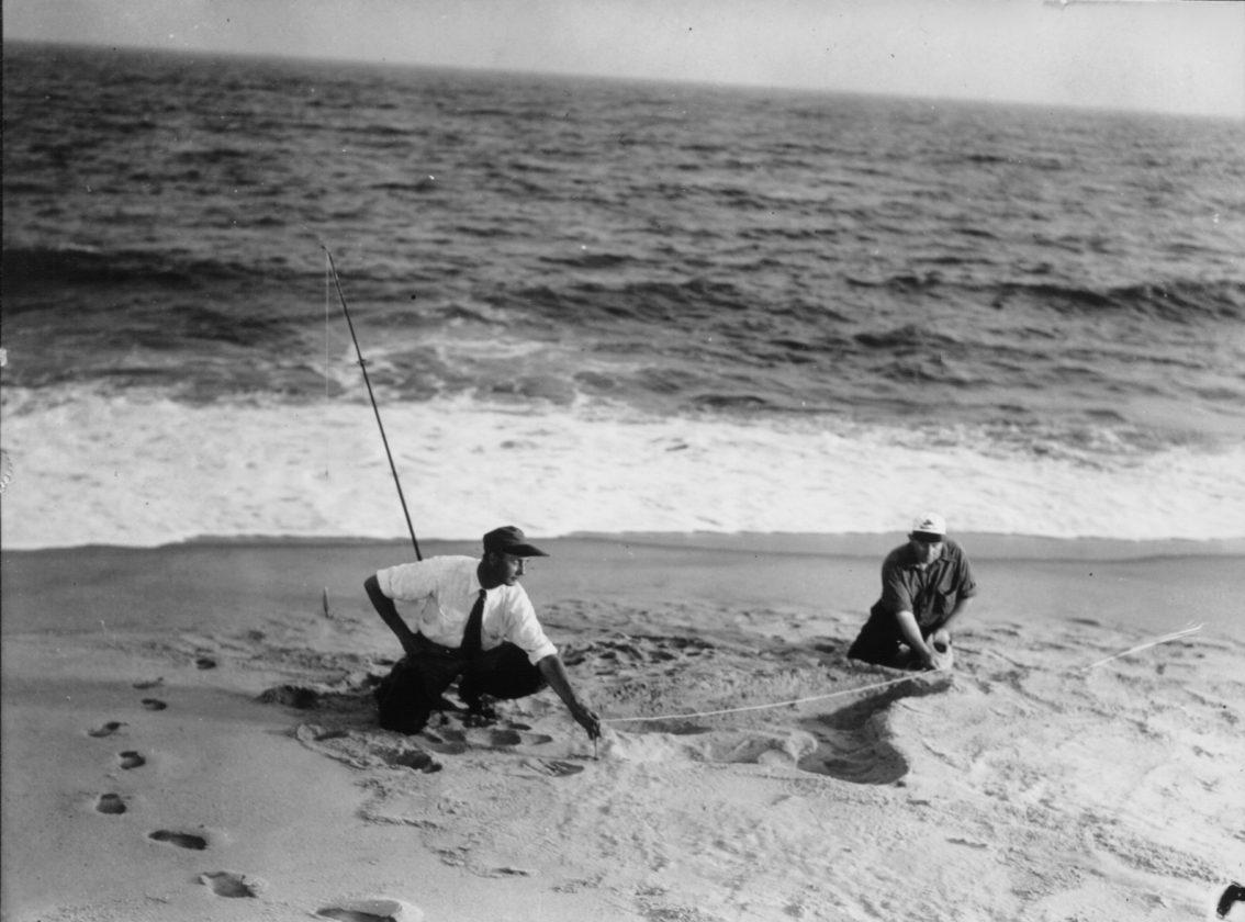 Sea-Serpent-Nantucket-Monstre-31