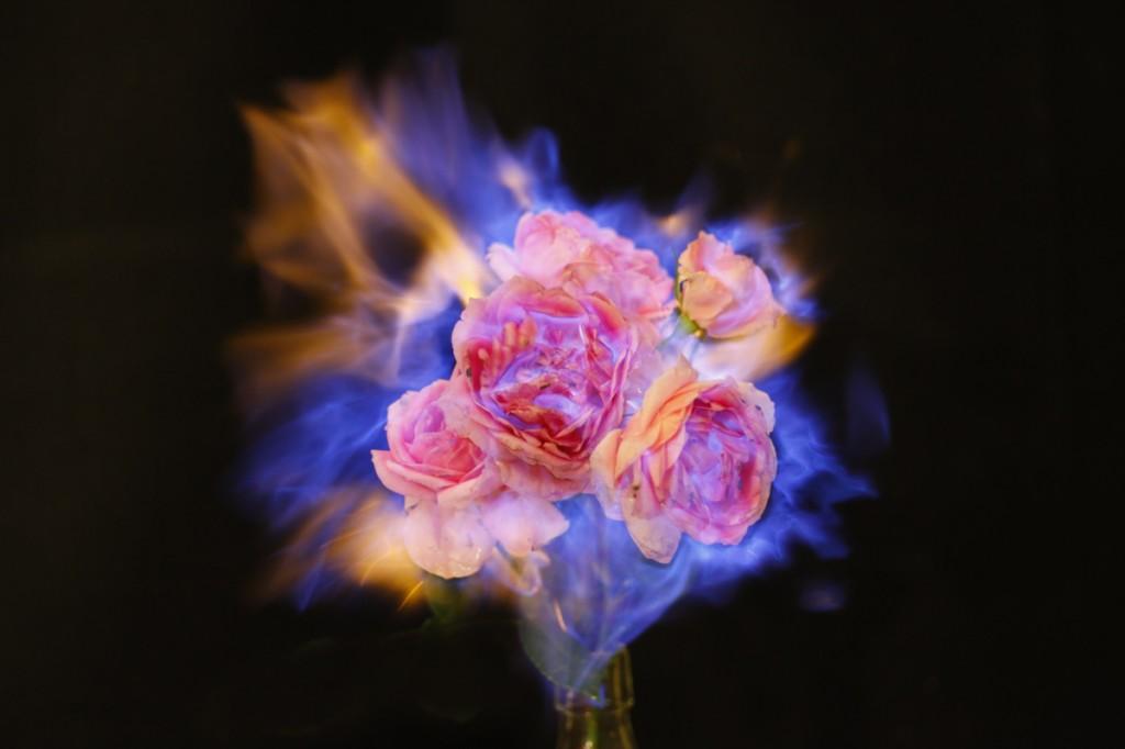 Fleur Feu 04 La Boite Verte