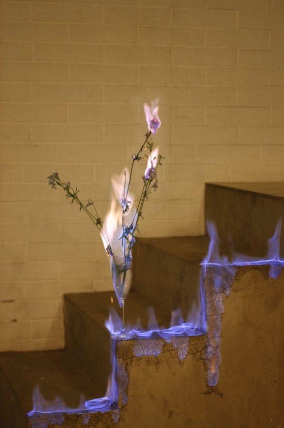 fleur-feu-06