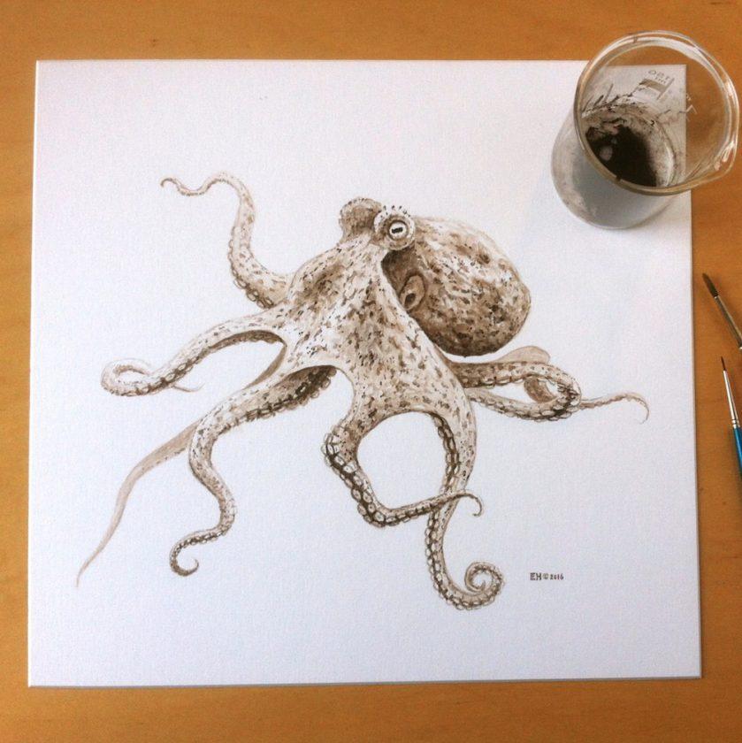 octopus-encre-dessin-01