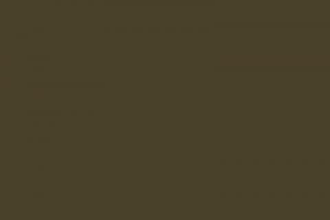 couleur-la-plus-moche-du-monde