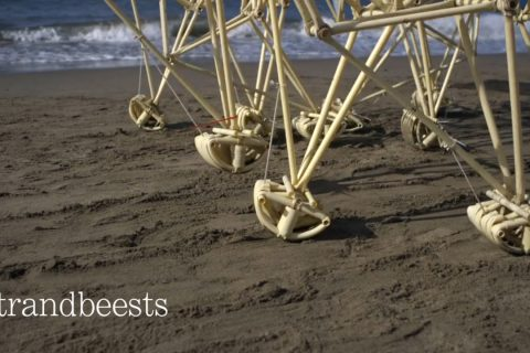 Les bêtes éoliennes et autonomes de Theo Jansen à San Fracisco