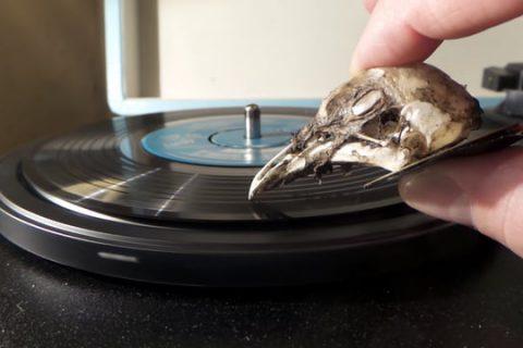 Des pointes de lectures pour vinyls expérimentales