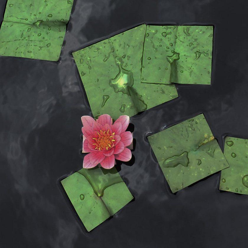 fleur-carre-06